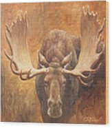 Bull Moose - Challenge Wood Print by Crista Forest