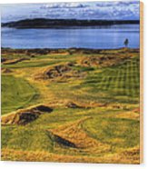 Chambers Bay Lone Tree Wood Print