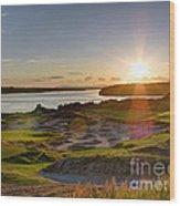 Chambers Bay Sun Flare - 2015 U.s. Open  Wood Print