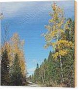 Changing Trail Wood Print