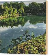 Chankanaab Mexico Lagoon Wood Print