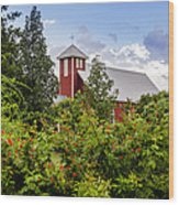 Chapel At The Antique Rose Emporium Wood Print