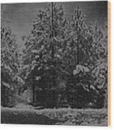 Charcoal Snowfall Wood Print