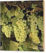 Chardonnay Wine Clusters Wood Print