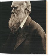 Charles Darwin By Julia Margaret Wood Print