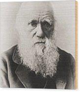 Charles Darwin Wood Print by English School