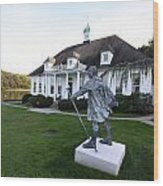 Charles Darwin Statue Cold Spring Harbor New York Wood Print