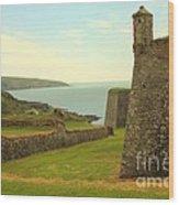 Charles Fort Kinsale Wood Print