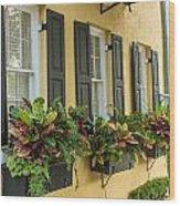 Charleston 12 Wood Print