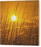 Charleston Beach Sunrise Wood Print