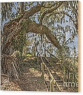 Charleston Oak Stairway Wood Print