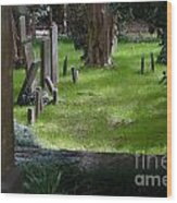 Charleston Sc Graveyard Wood Print