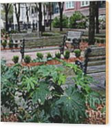 Charleston Waterfront Park Benches Wood Print by Carol Groenen