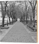 Charleston Waterfront Park Walkway - Black And White Wood Print