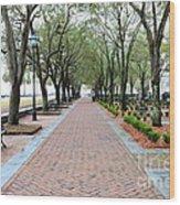 Charleston Waterfront Park Walkway Wood Print