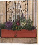 Charleston Window Garden Wood Print