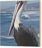 Charlie The Pelican Wood Print