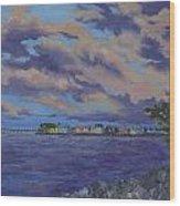 Charlotte Harbor Sunset Wood Print