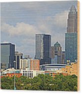 Charlotte Panorama II Wood Print by Gene Berkenbile