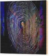 Charlotte's Rainbow Wood Print