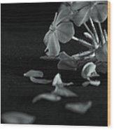 Charm Is Deceptive... Beauty Fleeting Wood Print