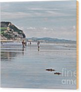 Charmouth Beach 2 Wood Print