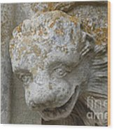 Chartres Cathedral Carved Head Wood Print