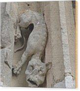 Chartres Cathedral Dog Gargoyle Wood Print