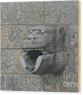 Chartres Cathedral Gargoyle Drain Wood Print