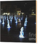Chartres Street Fountains Wood Print