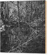 Chassahowitzka Number One Wood Print