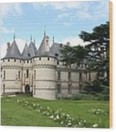 Chateau Chaumont From The Garden  Wood Print