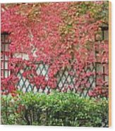 Chateau Chenonceau Vines On Wall Image One Wood Print