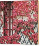Chateau Chenonceau Vines On Wall Image Three Wood Print