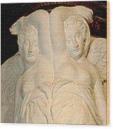 Chateau De Chenonceau Angels Wood Print