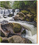 Chattooga River Potholes Waterfall Highlands Nc - The Artist's Hand Wood Print by Dave Allen