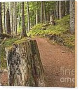 Cheakamus Lake Trail Wood Print