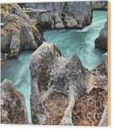 Cheakamus River Channel Wood Print