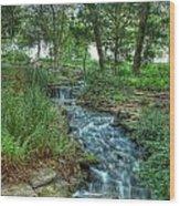Cheekwood Creek Wood Print by Zachary Cox