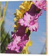 Cheerful Gladiolus Wood Print