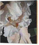 Cheesecake Iris Wood Print