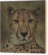Cheetah Face Wood Print