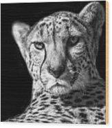 Cheetah In Black And White Wood Print