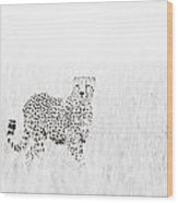 Cheetah In The Grass Wood Print by Mike Gaudaur