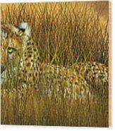 Cheetah - In The Wild Grass Wood Print