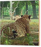 Cheetah Lunch-87 Wood Print