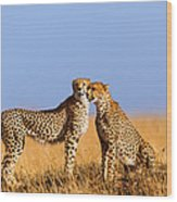 Cheetah Mother With Daughter Masai Mara Wood Print