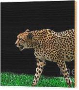 Cheetah On The Prowl Wood Print