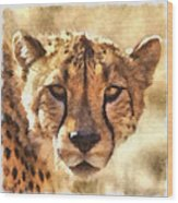 Cheetah One Wood Print