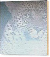 Cheetah Visits The Camp At Night Wood Print